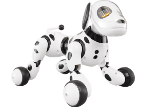ZOOMER-robothund-063742-1107749