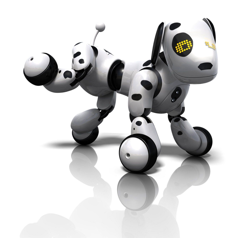 zoomer pup com #11